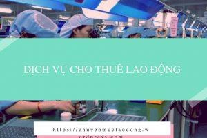 Dịch Vụ Cho Thuê Lao Động Tại Tp. Hồ Chí Minh 1