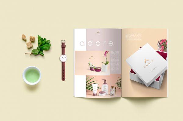 Các mẫu thiết kế Catalog đẹp cần tham khảo ngay