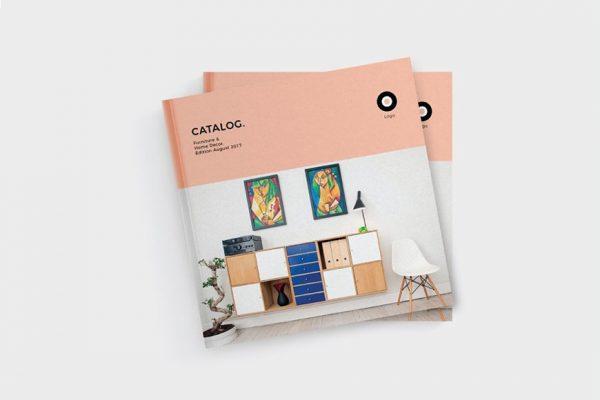 Kích thước Catalogue chuẩn là bao nhiêu?